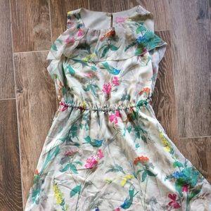 Ted Baker bird print dress size 2 knee length